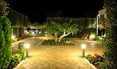 Pomegranate Tree With Fruits In Night Illumination At Luxury Hotel, Halkidiki, Greece