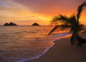 picture of pacific islands  - Pacific sunrise at Lanikai beach in Hawaii - JPG
