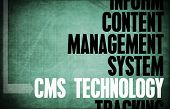 CMS Technology Core Principles as a Concept