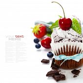 chocolate cake with fresh berry. With easy removable sample text