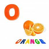 Illustrated Alphabet Letter O And Orange On White Background.