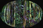Oval Bamboo Design
