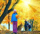 Family In Autumn Sunshiny Maple Park