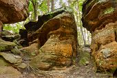 Beauty Of Earth. The Hell Rocks Near Nieklan, Poland.