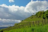 pic of chapels  - Hill with chapel and vineyard in Maribor Slovenia - JPG