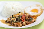 Chicken Panang Curry With Rice And Fried Egg