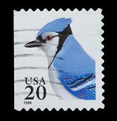 Usa - Circa 1996: A Stamp Printed In Usa Shows Image Of The Blue Jay, Booklet Stamps Series, Circa 1