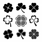 shamrock and four leaf clover collection