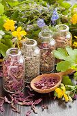 Herbs In Glass Bottles, Healthy Plants And Wooden Spoon