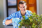 cheerful young man trimming a shrub in front of house