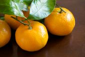 Mandarin Oranges On Wooden Table