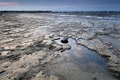 Mud At Low Tide On North Sea