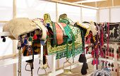 A beautiful colorful green saddle and pads for horse