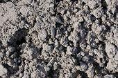Dirt ground