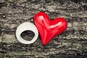 Red Heart And White Ring On The Tree Bark