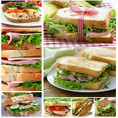 collage of different sandwiches (ham and cheese, tuna and cucumber)