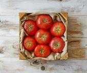 Fresh Organic Mature Tomatoes.