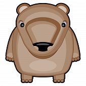 cartoon illustration of cute baby bear