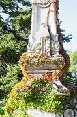 Ivy-covered Column In Garden Of Massandra Palace