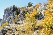 Slope Ai-petri Mountain In Sunny Autumn Day