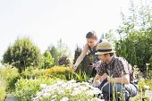 Gardeners working at plant nursery