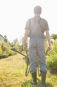 Full-length rear view of gardener pushing wheelbarrow at garden