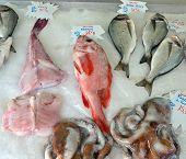 City Of Nice - Fish Market