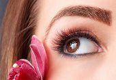 Colorful Eyelash Extensions