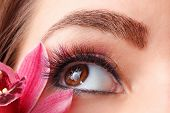 Closeup Of Colorful Eyelash Extensions