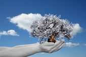 Concept or conceptual human man or woman hand holding a spring flower tree and blue sky with clouds ecology background