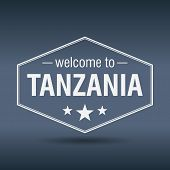 Welcome To Tanzania Hexagonal White Vintage Label