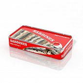 3D sardines in metallic can isolated on white
