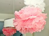 Pink and white pompoms hanging from a ceiling