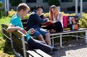 Diverse Students Spending Time Outdoors
