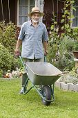 senior with a  barrow in the garden