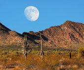 picture of thunderhead  - Desert moon over the southwestern USA desert and mountains - JPG