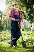 Senior gardener with a spade in the garden