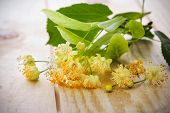 Blossoms of linden tree on wooden background