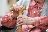 image of geriatric  - Hands of the old woman with a cane - JPG