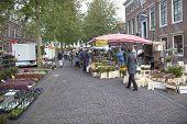 Flowers On The Market In Wijk Bij Duurstede