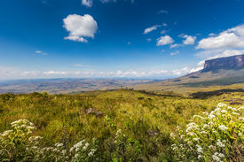 image of canaima  - The view from the plateau of Roraima on the Grand Sabana  - JPG