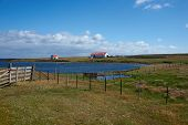 stock photo of falklands  - Farm buildings on the coast of Bleaker Island in the Falkland Islands - JPG