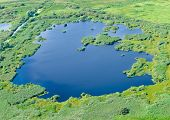 picture of flood  - Aerial view on the flood land the great river during summer - JPG
