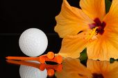 stock photo of hibiscus  - Orange hibiscus flower and golf equipments on the glass plate - JPG