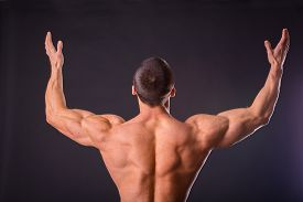 image of bodybuilder  - Muscular man bodybuilder - JPG