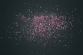 image of wind-rose  - Pink flower petals failing down on dark background - JPG
