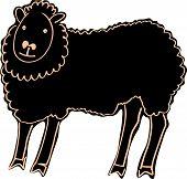 foto of laughable  - Black sheep - JPG