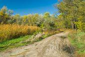 pic of dnepropetrovsk  - Fall landscape in central Ukraine near Dnepropetrovsk city - JPG