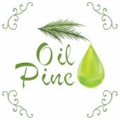 stock photo of drop oil  - Oil drop pine oil cosmetic falling from leef with decoration elements isolated on white background - JPG