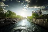 picture of notre dame  - Notre Dame de Paris - JPG
